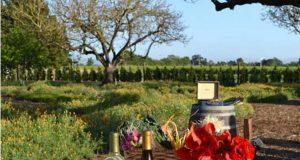 Wineries SonomaCounty.com