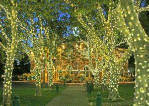 Holiday lights Sonoma Plaza