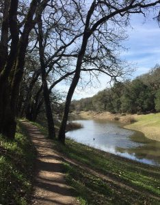 Sonoma County Parks closed