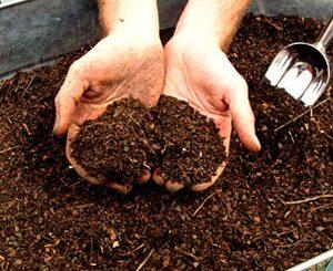 Compost class