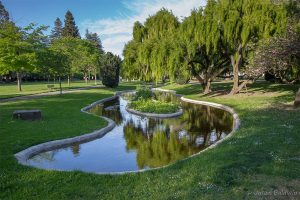 Luther Burbank Gardens by Jason Baldwin
