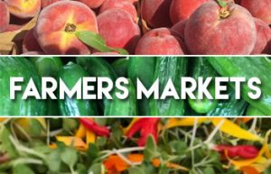 Farmers Markets in Sonoma County