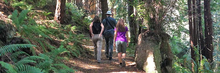 Hikers at Stillwater Cove