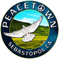 Peacetown Virtual Summer Concert