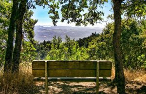 Spectacular views at Jack London State Park.