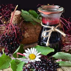 Class on how to make elderberry syrup
