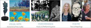 Petaluma Arts Association activities during COVID 19