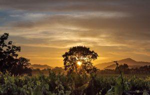 Sunset by Jason Baldwin.