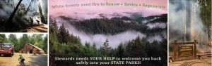 Stewards of the Coast and Redwoods Fire Fundraiser