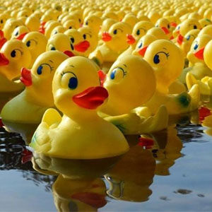 4th of July Duck Dash and Kids' Parade in Healdsburg