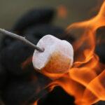 Sonoma Petaluma Parks Campfire