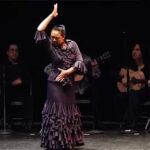 Flamenco in Petaluma